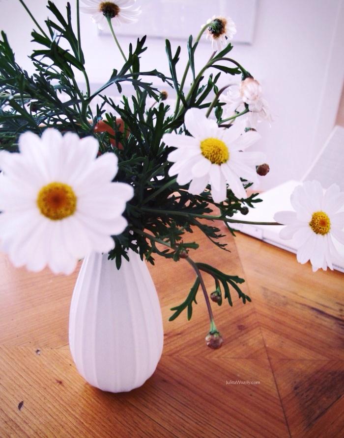 daisies&romance_julitawozny.com_24.02.2014